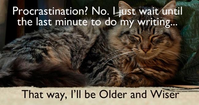 Procasty-cat